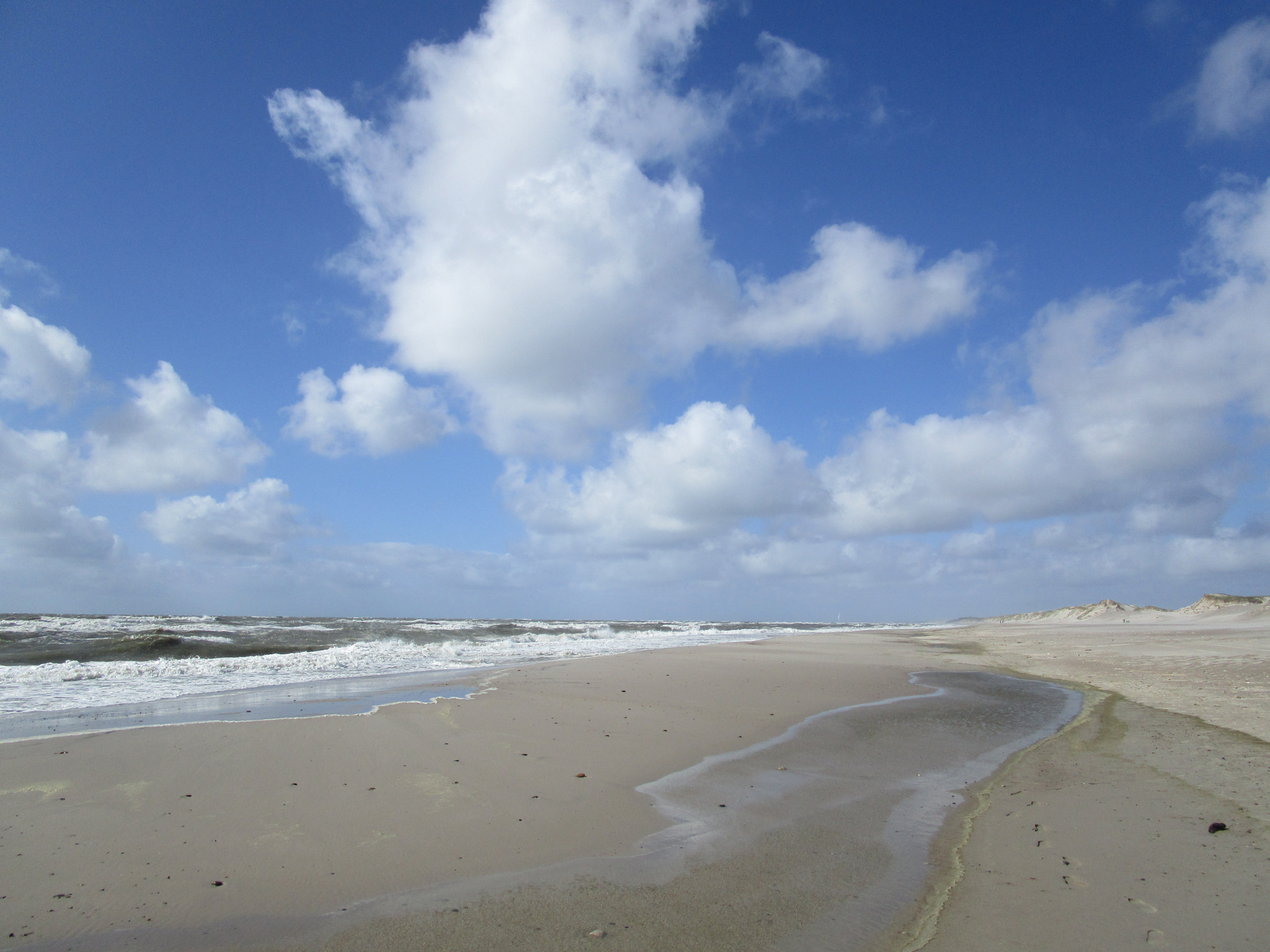 Weißer Strand in Hvide Sande